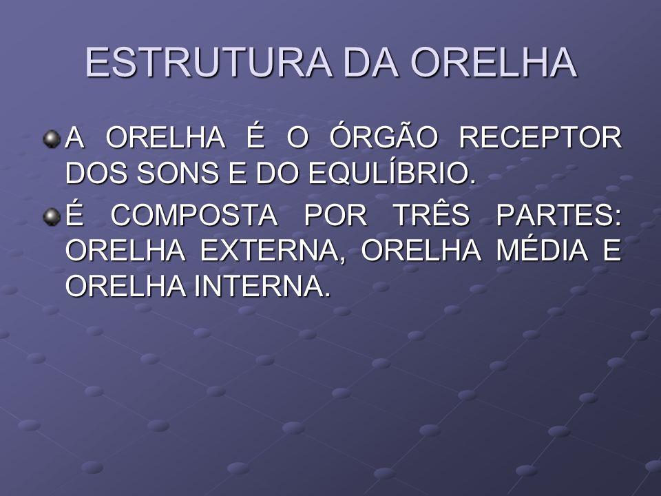 ESTRUTURA DA ORELHA A ORELHA É O ÓRGÃO RECEPTOR DOS SONS E DO EQULÍBRIO. É COMPOSTA POR TRÊS PARTES: ORELHA EXTERNA, ORELHA MÉDIA E ORELHA INTERNA.