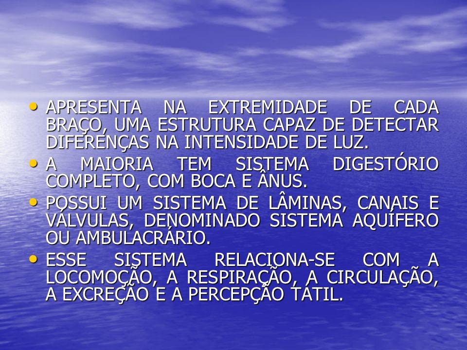 APRESENTA NA EXTREMIDADE DE CADA BRAÇO, UMA ESTRUTURA CAPAZ DE DETECTAR DIFERENÇAS NA INTENSIDADE DE LUZ. APRESENTA NA EXTREMIDADE DE CADA BRAÇO, UMA