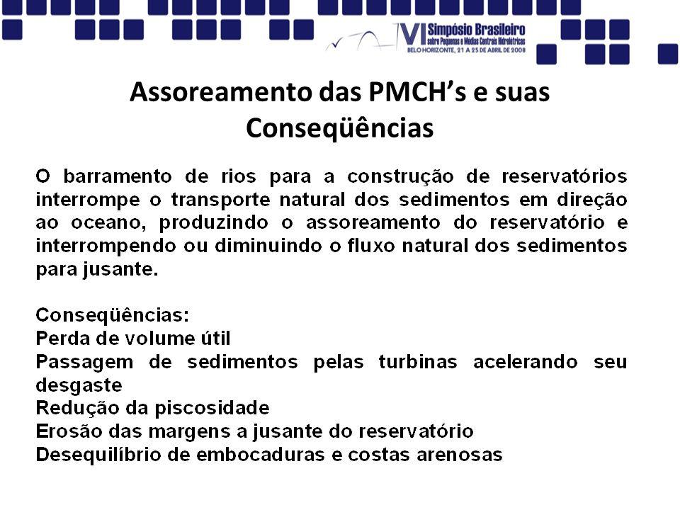Assoreamento das PMCHs e suas Conseqüências