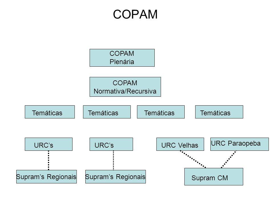 COPAM Plenária COPAM Normativa/Recursiva Temáticas URCs URC Velhas URC Paraopeba Supram CM Suprams Regionais