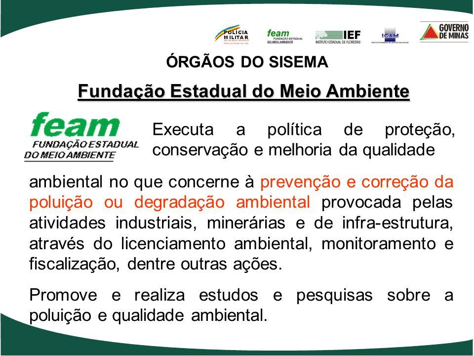 Fundação Estadual do Meio Ambiente ambiental no que concerne à prevenção e correção da poluição ou degradação ambiental provocada pelas atividades ind