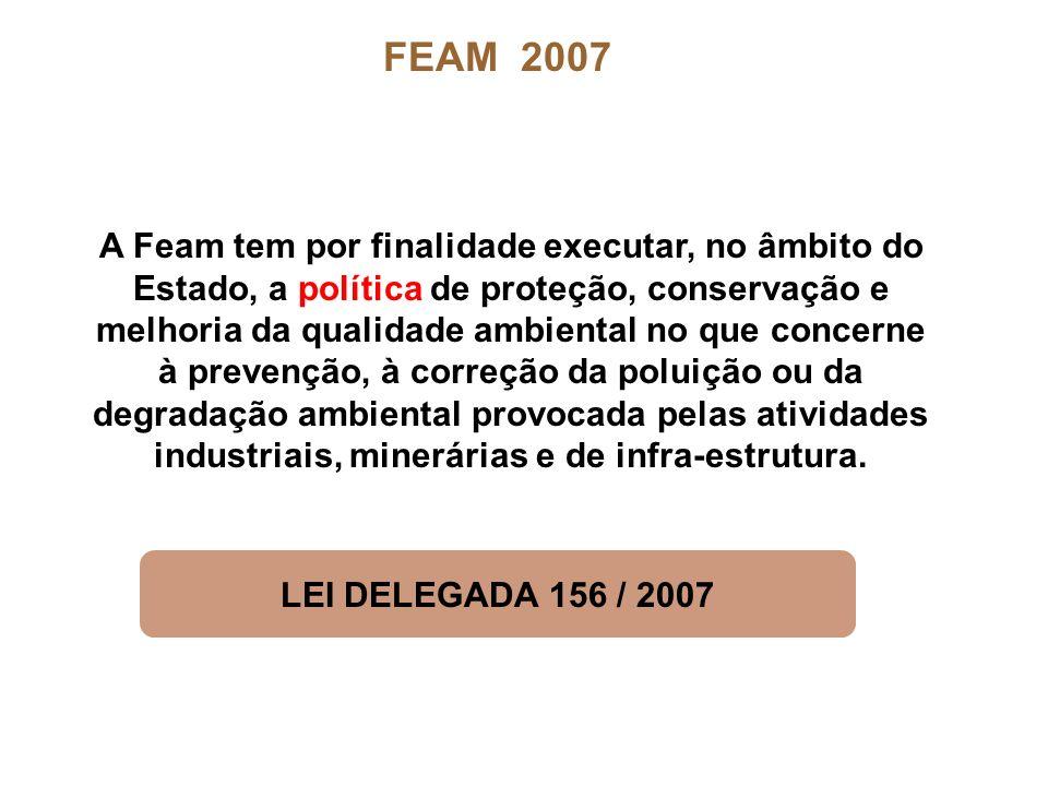 A Feam tem por finalidade executar, no âmbito do Estado, a política de proteção, conservação e melhoria da qualidade ambiental no que concerne à preve