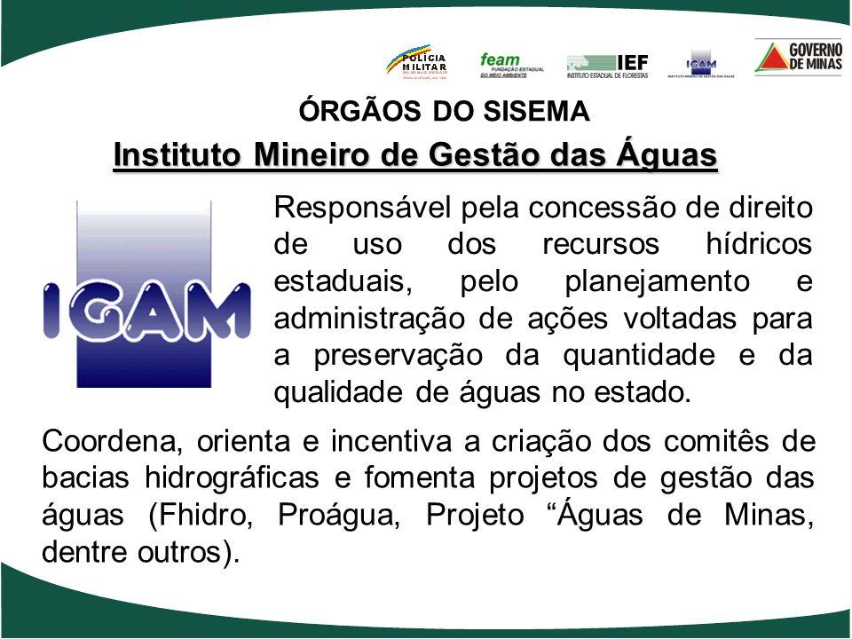 Instituto Mineiro de Gestão das Águas Coordena, orienta e incentiva a criação dos comitês de bacias hidrográficas e fomenta projetos de gestão das águ