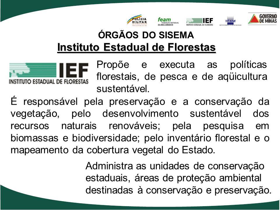 Instituto Estadual de Florestas Propõe e executa as políticas florestais, de pesca e de aqüicultura sustentável. É responsável pela preservação e a co