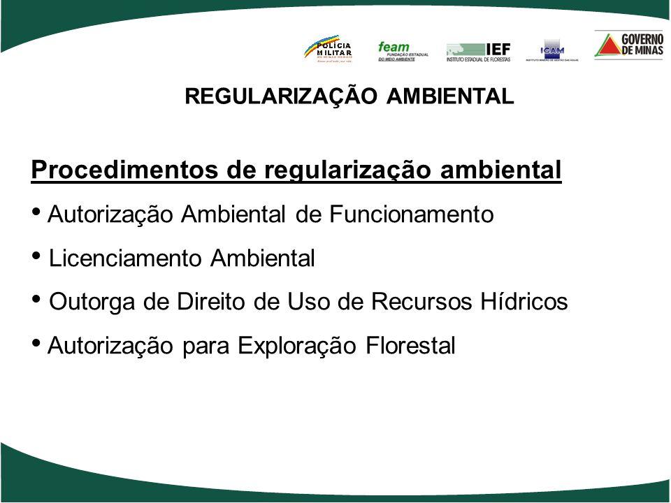 REGULARIZAÇÃO AMBIENTAL Procedimentos de regularização ambiental Autorização Ambiental de Funcionamento Licenciamento Ambiental Outorga de Direito de