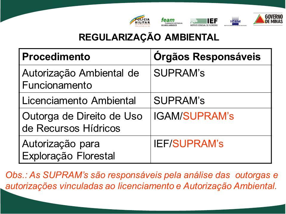 REGULARIZAÇÃO AMBIENTAL ProcedimentoÓrgãos Responsáveis Autorização Ambiental de Funcionamento SUPRAMs Licenciamento AmbientalSUPRAMs Outorga de Direi