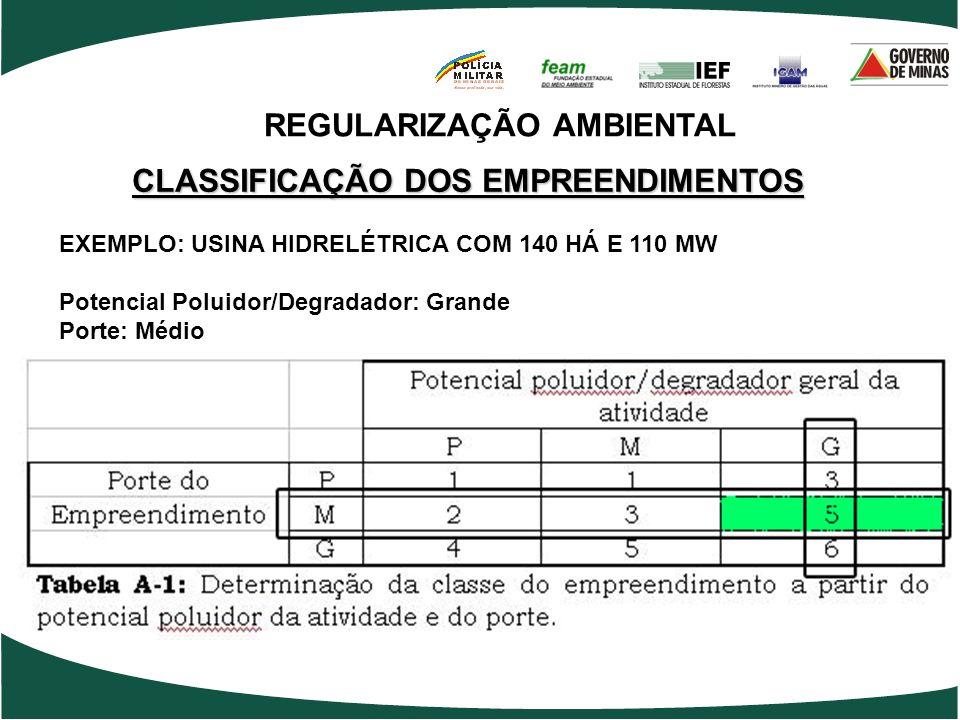 EXEMPLO: USINA HIDRELÉTRICA COM 140 HÁ E 110 MW Potencial Poluidor/Degradador: Grande Porte: Médio REGULARIZAÇÃO AMBIENTAL CLASSIFICAÇÃO DOS EMPREENDI
