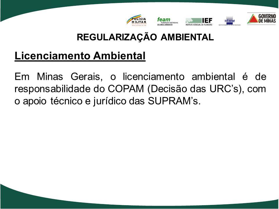 REGULARIZAÇÃO AMBIENTAL Licenciamento Ambiental Em Minas Gerais, o licenciamento ambiental é de responsabilidade do COPAM (Decisão das URCs), com o ap