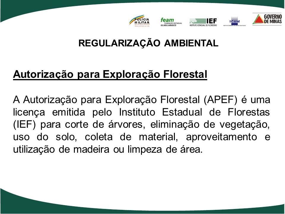 REGULARIZAÇÃO AMBIENTAL Autorização para Exploração Florestal A Autorização para Exploração Florestal (APEF) é uma licença emitida pelo Instituto Esta