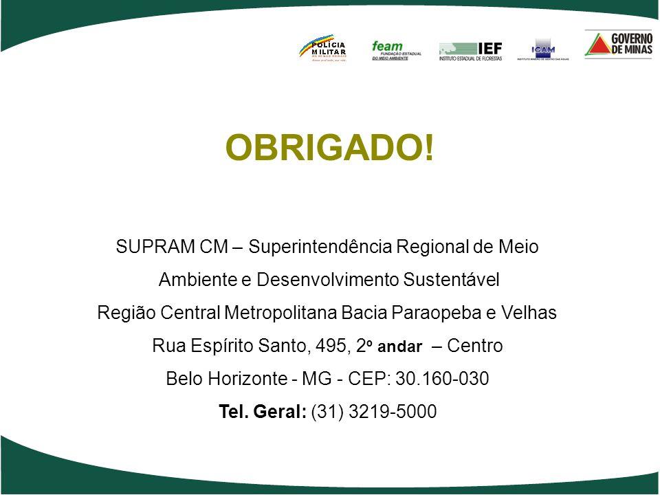 OBRIGADO! SUPRAM CM – Superintendência Regional de Meio Ambiente e Desenvolvimento Sustentável Região Central Metropolitana Bacia Paraopeba e Velhas R