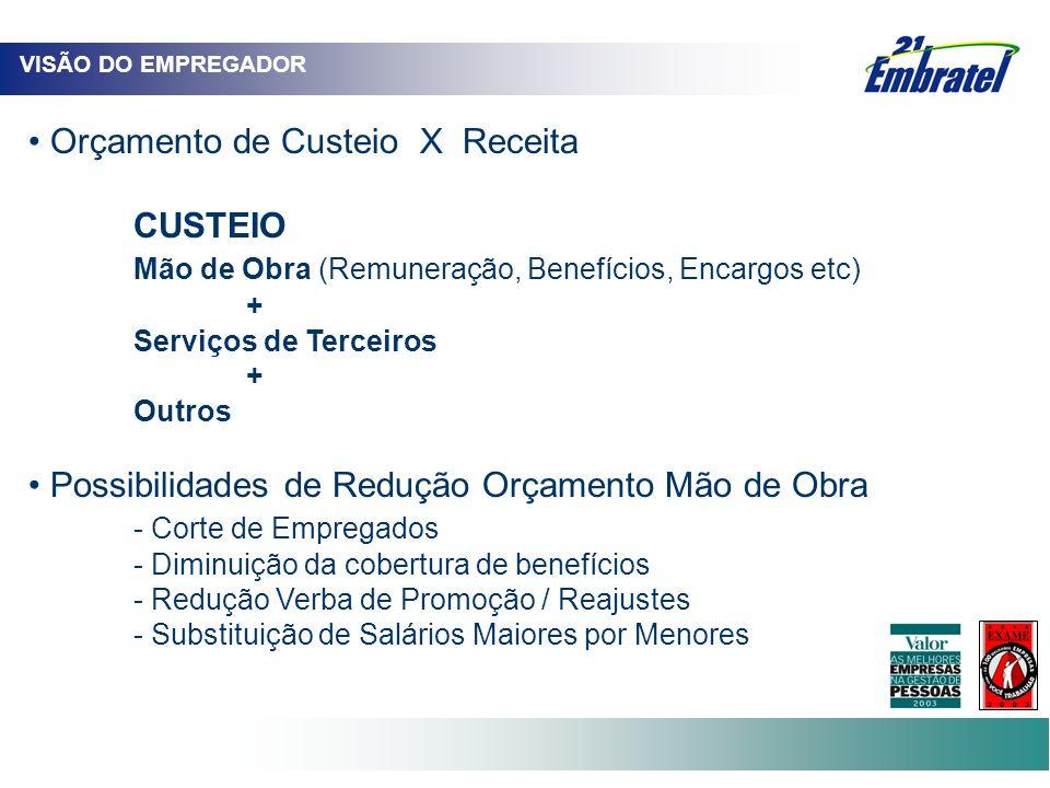 VISÃO DO EMPREGADOR Orçamento de Custeio X Receita CUSTEIO Mão de Obra (Remuneração, Benefícios, Encargos etc) + Serviços de Terceiros + Outros Possib
