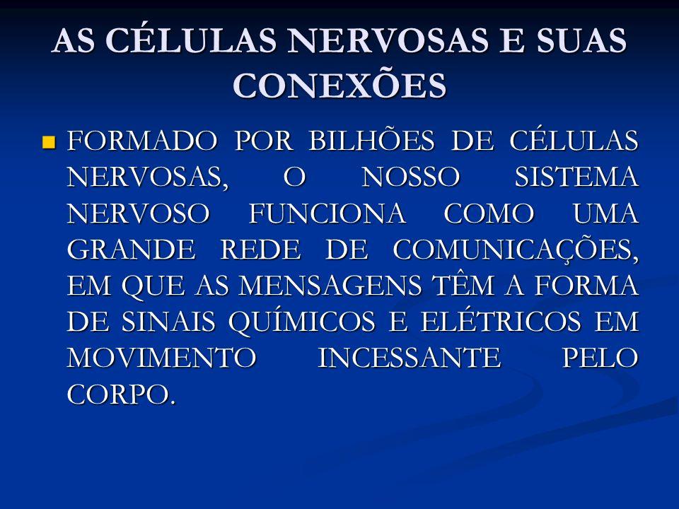 AS CÉLULAS NERVOSAS E SUAS CONEXÕES FORMADO POR BILHÕES DE CÉLULAS NERVOSAS, O NOSSO SISTEMA NERVOSO FUNCIONA COMO UMA GRANDE REDE DE COMUNICAÇÕES, EM