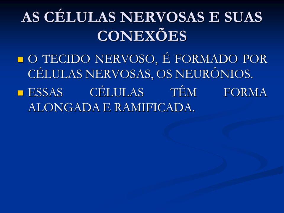 AS CÉLULAS NERVOSAS E SUAS CONEXÕES O TECIDO NERVOSO, É FORMADO POR CÉLULAS NERVOSAS, OS NEURÔNIOS. O TECIDO NERVOSO, É FORMADO POR CÉLULAS NERVOSAS,
