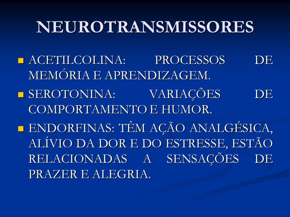NEUROTRANSMISSORES ACETILCOLINA: PROCESSOS DE MEMÓRIA E APRENDIZAGEM. ACETILCOLINA: PROCESSOS DE MEMÓRIA E APRENDIZAGEM. SEROTONINA: VARIAÇÕES DE COMP