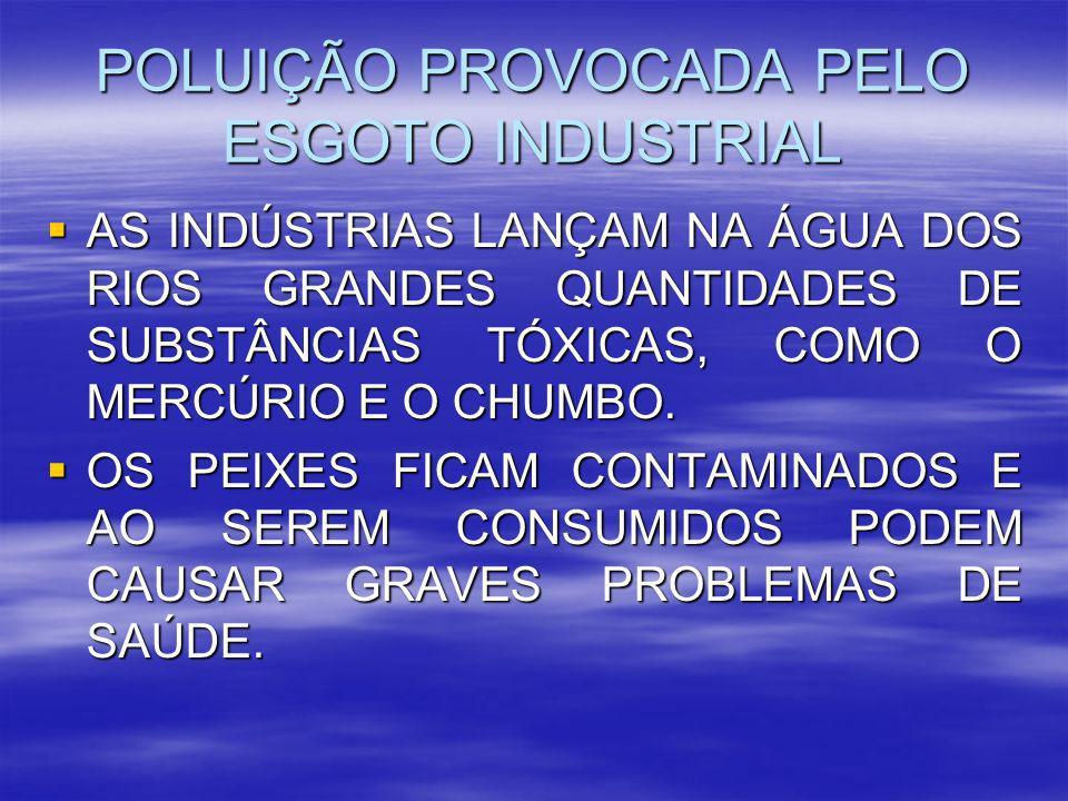 POLUIÇÃO PROVOCADA PELO ESGOTO INDUSTRIAL AS INDÚSTRIAS LANÇAM NA ÁGUA DOS RIOS GRANDES QUANTIDADES DE SUBSTÂNCIAS TÓXICAS, COMO O MERCÚRIO E O CHUMBO