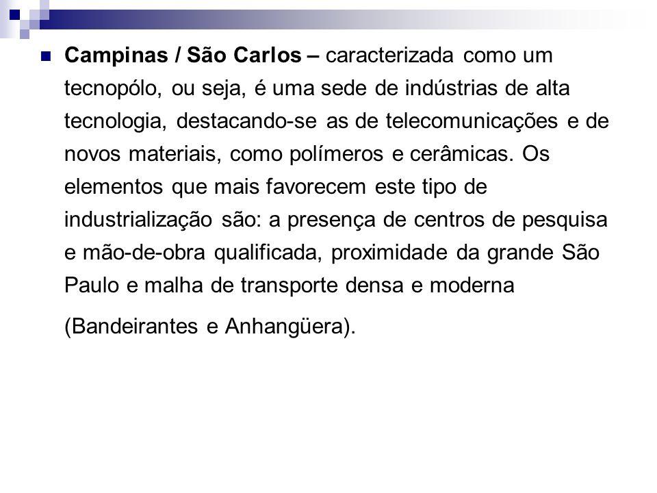Campinas / São Carlos – caracterizada como um tecnopólo, ou seja, é uma sede de indústrias de alta tecnologia, destacando-se as de telecomunicações e