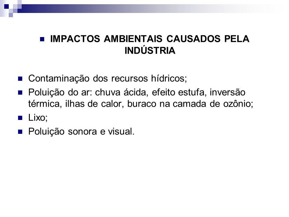 IMPACTOS AMBIENTAIS CAUSADOS PELA INDÚSTRIA Contaminação dos recursos hídricos; Poluição do ar: chuva ácida, efeito estufa, inversão térmica, ilhas de