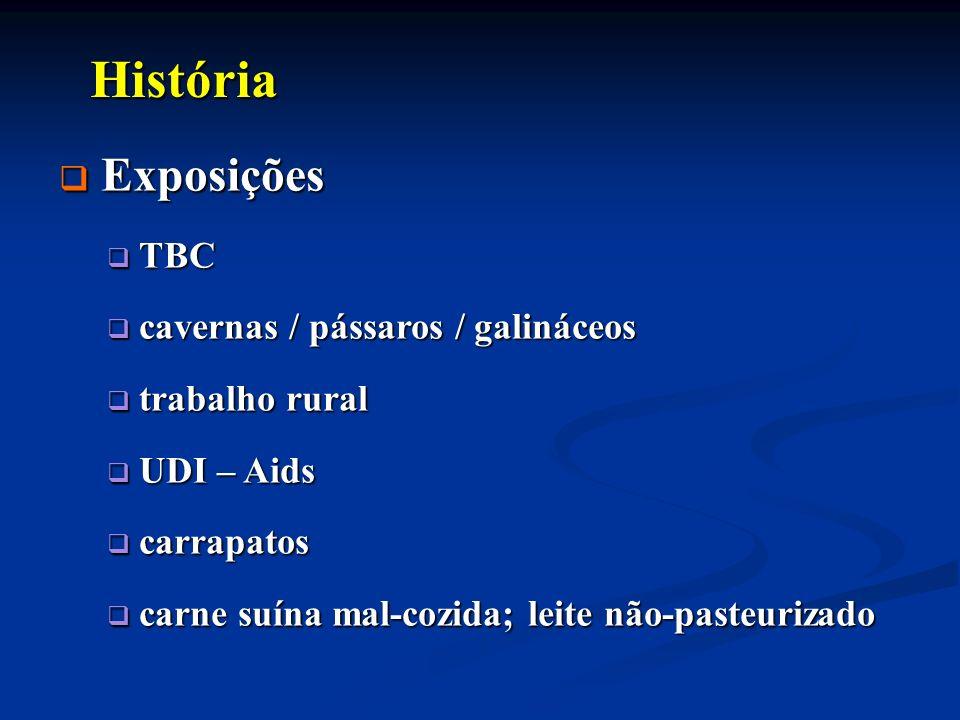 História História Exposições Exposições TBC TBC cavernas / pássaros / galináceos cavernas / pássaros / galináceos trabalho rural trabalho rural UDI –