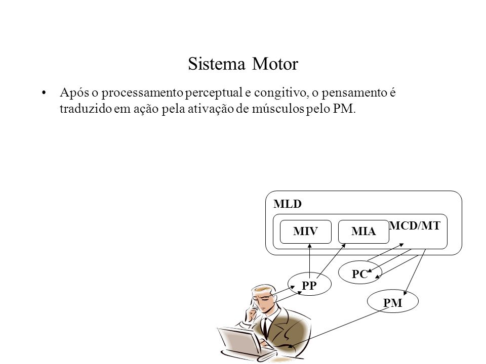 Sistema Motor Após o processamento perceptual e congitivo, o pensamento é traduzido em ação pela ativação de músculos pelo PM. PP PC PM MLD MCD/MT MIA