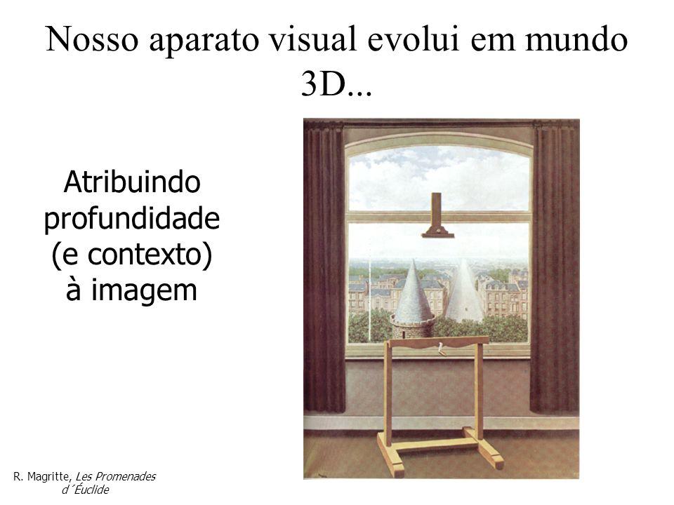 Nosso aparato visual evolui em mundo 3D... Atribuindo profundidade (e contexto) à imagem R. Magritte, Les Promenades d´Éuclide