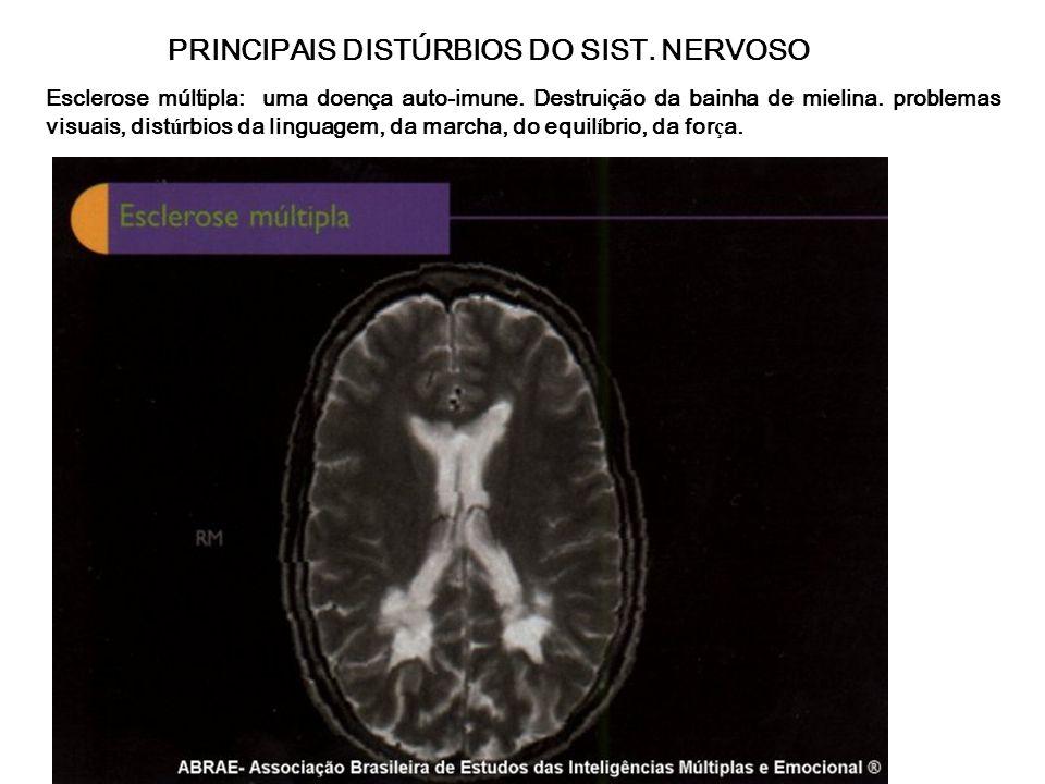 ARCO REFLEXO DORSAL VENTRAL Substância branca Substância cinzenta MEDULA corpo celular localizado no gânglio nio interneurônio neurônio sensitivo neur