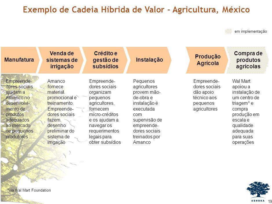 18 Fonte:FEC Ashoka Pequenos agricultores no México AgrícolaCultivadaIrrigável 192,3 MMHa 22,0 1,7 11,5%20% 50-150% adicionais ao mercado tradicional.