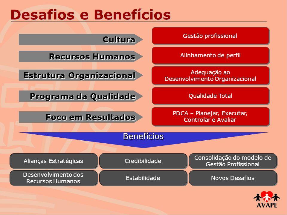 Desafios e Benefícios Cultura Recursos Humanos Estrutura Organizacional Programa da Qualidade Foco em Resultados Gestão profissional Alinhamento de pe