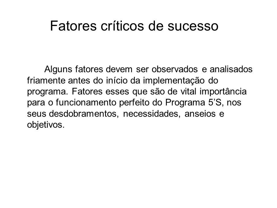 Fatores críticos de sucesso Alguns fatores devem ser observados e analisados friamente antes do início da implementação do programa. Fatores esses que