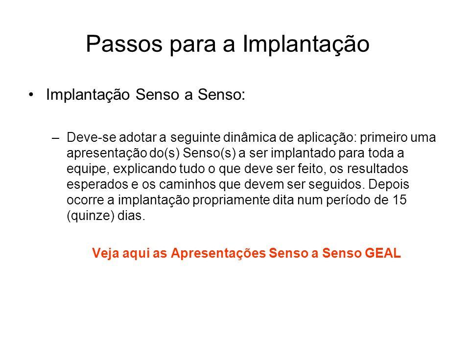 Passos para a Implantação Implantação Senso a Senso: –Deve-se adotar a seguinte dinâmica de aplicação: primeiro uma apresentação do(s) Senso(s) a ser