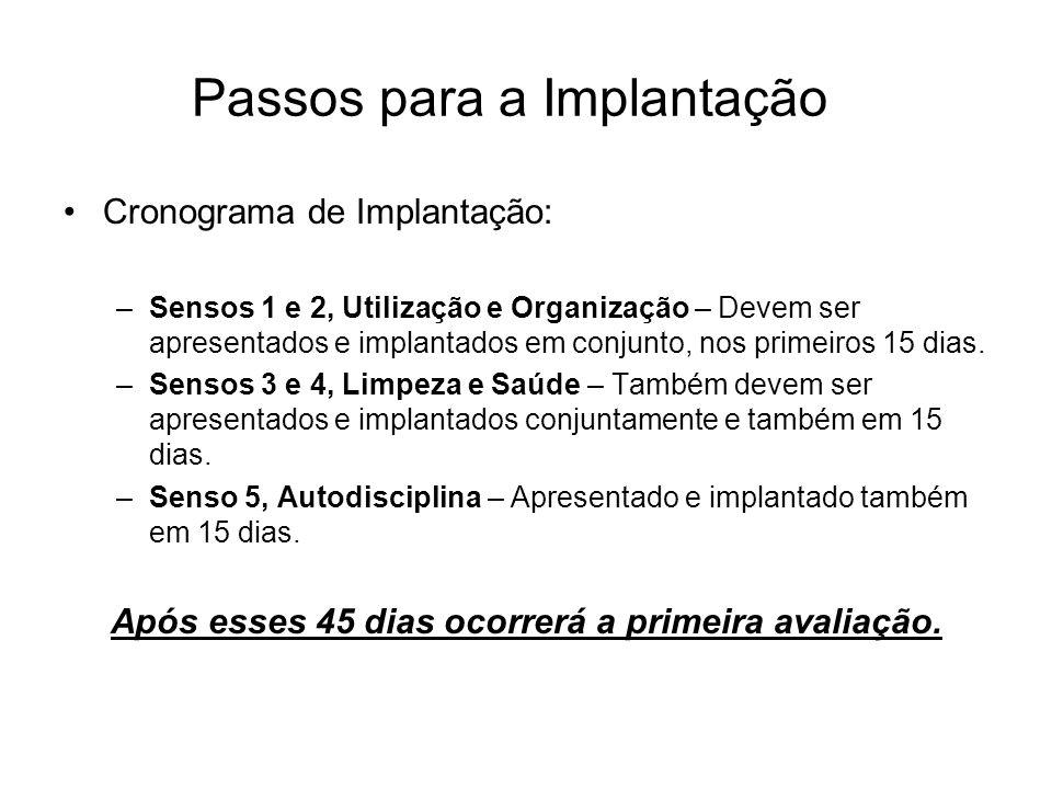 Passos para a Implantação Cronograma de Implantação: –Sensos 1 e 2, Utilização e Organização – Devem ser apresentados e implantados em conjunto, nos p