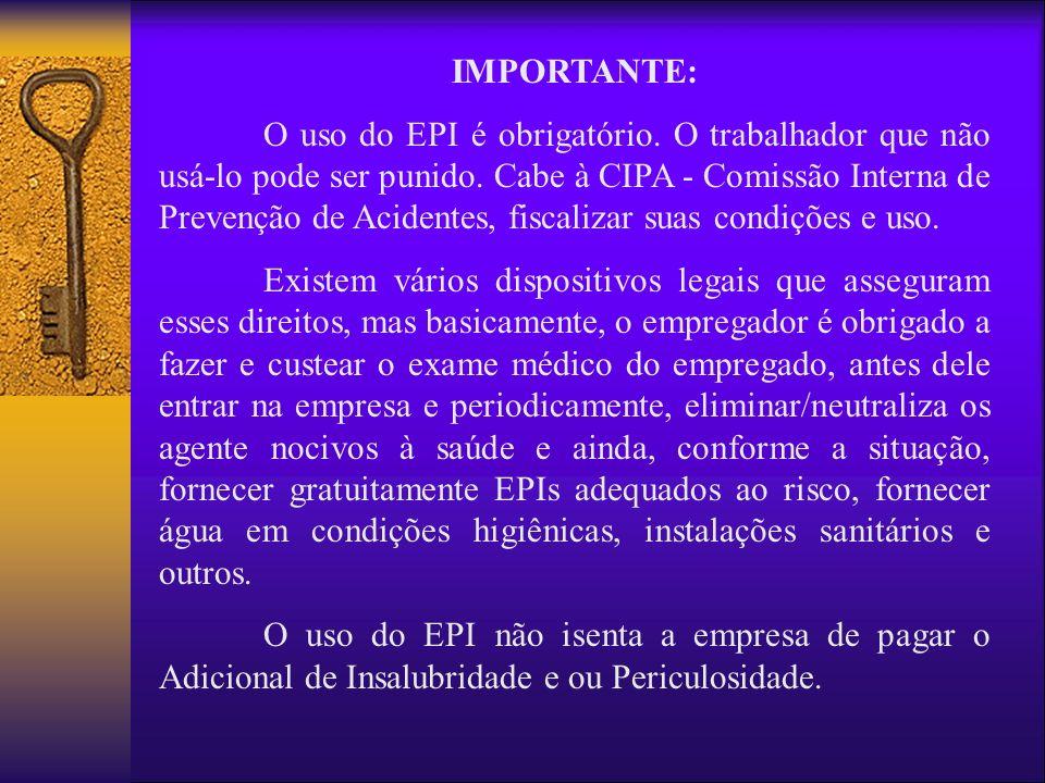 IMPORTANTE: O uso do EPI é obrigatório. O trabalhador que não usá-lo pode ser punido. Cabe à CIPA - Comissão Interna de Prevenção de Acidentes, fiscal