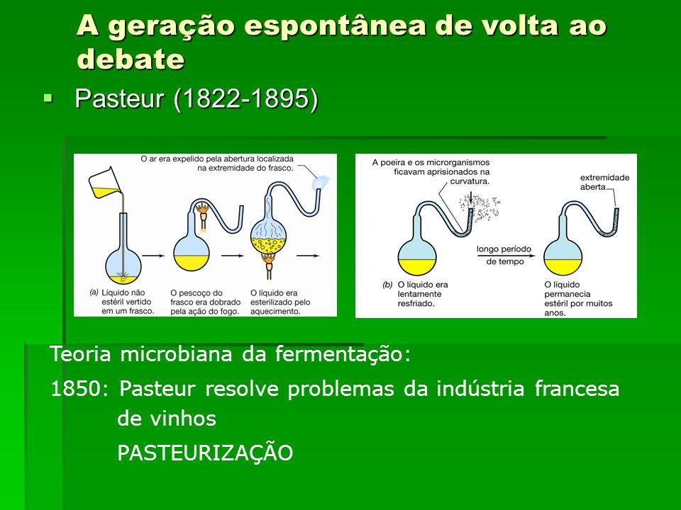 A geração espontânea de volta ao debate Pasteur (1822-1895) Pasteur (1822-1895) Teoria microbiana da fermentação: 1850: Pasteur resolve problemas da i