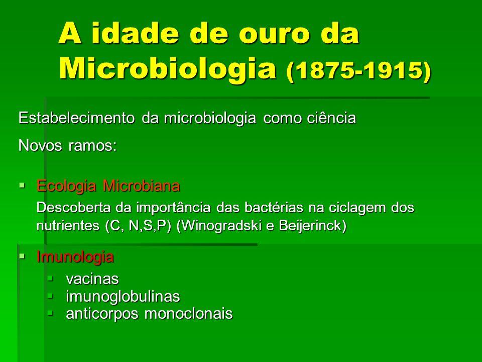 A idade de ouro da Microbiologia (1875-1915) Estabelecimento da microbiologia como ciência Novos ramos: Ecologia Microbiana Ecologia Microbiana Descob