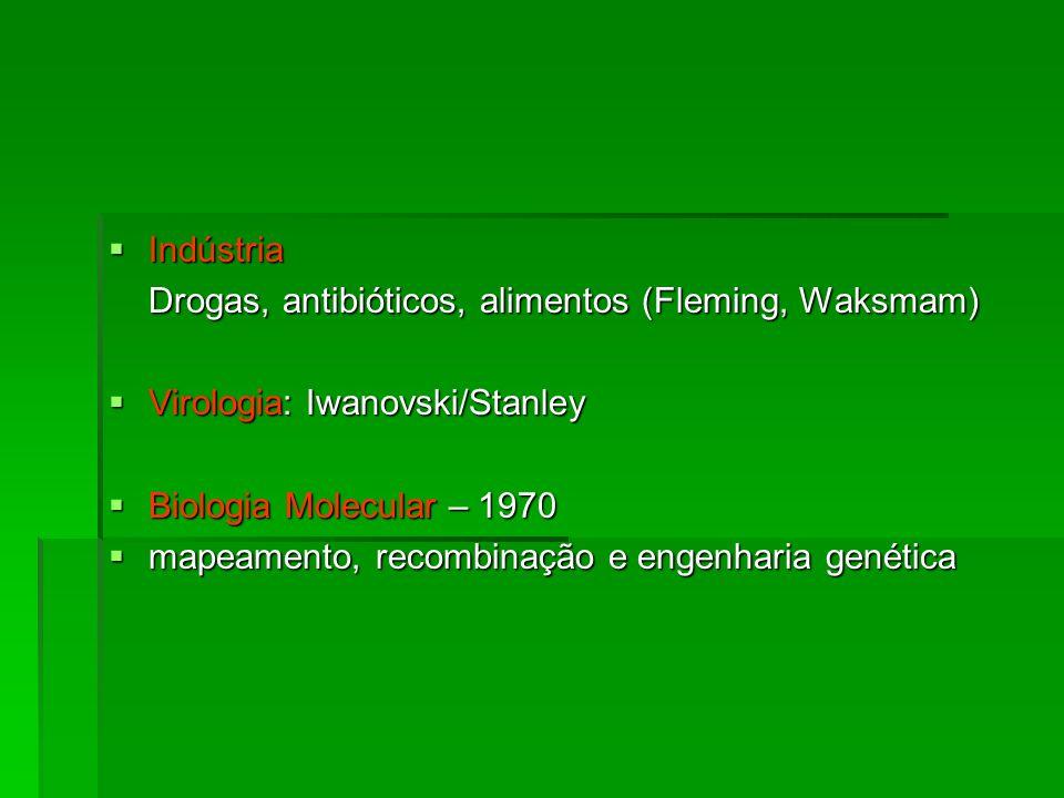 Indústria Indústria Drogas, antibióticos, alimentos (Fleming, Waksmam) Virologia: Iwanovski/Stanley Virologia: Iwanovski/Stanley Biologia Molecular –