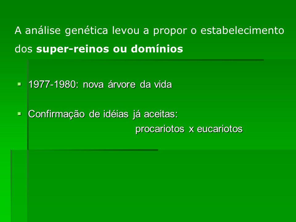 1977-1980: nova árvore da vida 1977-1980: nova árvore da vida Confirmação de idéias já aceitas: Confirmação de idéias já aceitas: procariotos x eucari