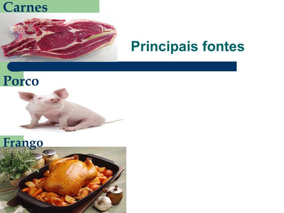 Carnes Porco Frango Principais fontes