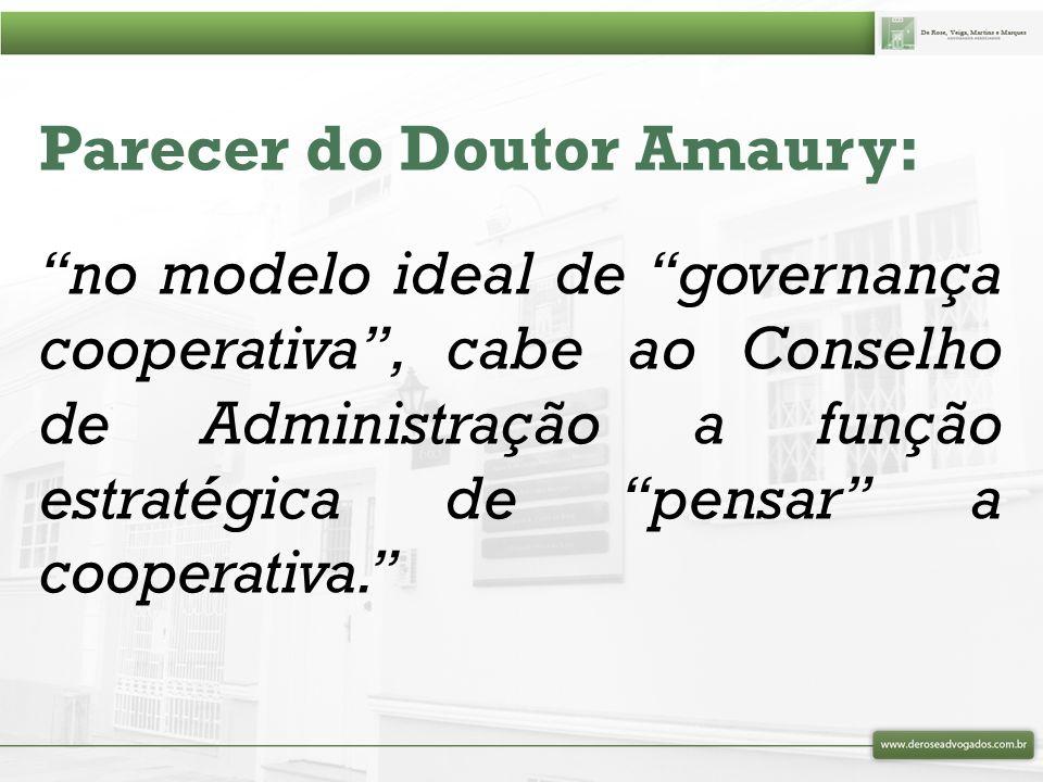 Parecer do Doutor Amaury: cabe ao Conselho Fiscal, às auditorias interna e externa e aos setores de controles internos, o acompanhamento crítico dos atos de gestão para, de forma permanente