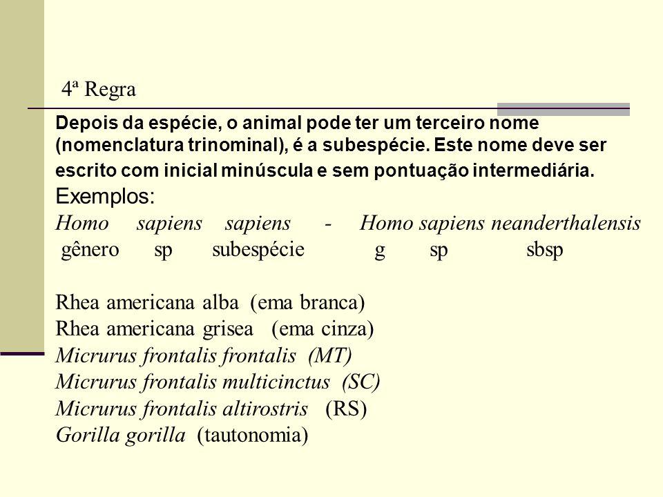 Depois da espécie, o animal pode ter um terceiro nome (nomenclatura trinominal), é a subespécie. Este nome deve ser escrito com inicial minúscula e se