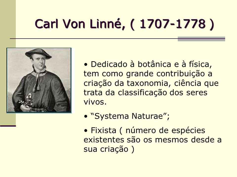 Carl Von Linné, ( 1707-1778 ) Dedicado à botânica e à física, tem como grande contribuição a criação da taxonomia, ciência que trata da classificação