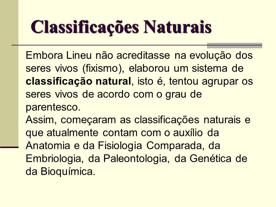 Classificações Naturais Embora Lineu não acreditasse na evolução dos seres vivos (fixismo), elaborou um sistema de classificação natural, isto é, tent