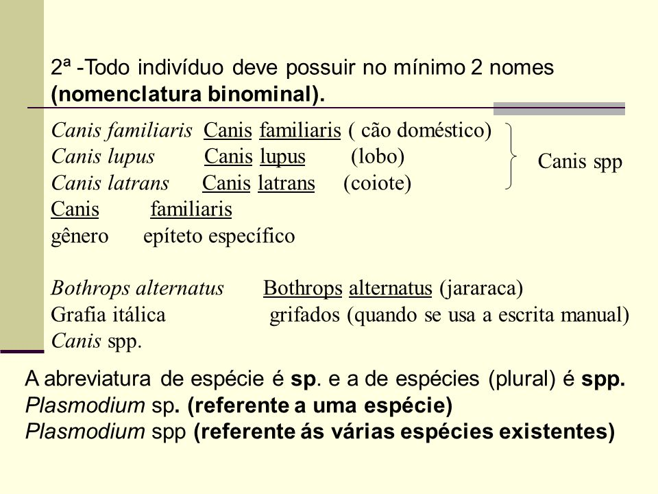 Nome da espécie (primeiro o nome do gênero e depois o da espécie) Oriza sativa (arroz) Gênero espécie Canabis sativa (maconha) Gênero espécie