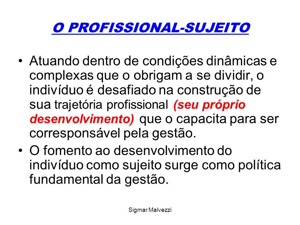 Sigmar Malvezzi O PROJETO DE VIDA PESSOAL E PROFISSIONAL O projeto de vida pessoal é um instrumento organizador e regulador da própria existência.