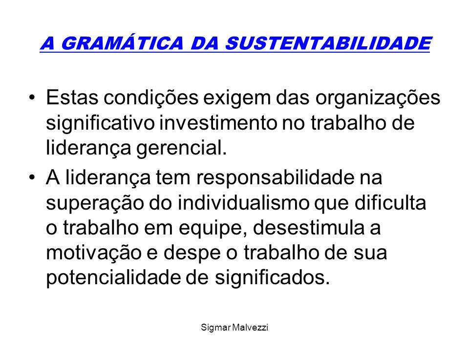 Sigmar Malvezzi A GRAMÁTICA DA SUSTENTABILIDADE Estas condições exigem das organizações significativo investimento no trabalho de liderança gerencial.