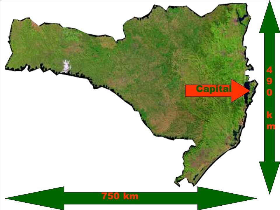 Regiões com perda populacional Regiões com ganho populacional Litoralização