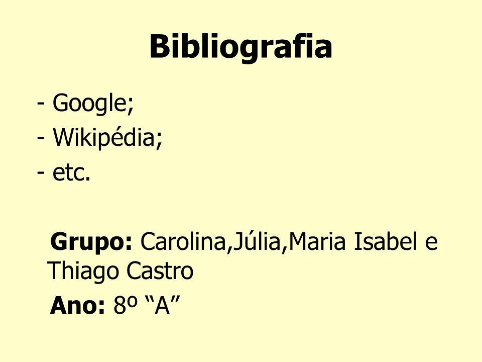 Bibliografia - Google; - Wikipédia; - etc. Grupo: Carolina,Júlia,Maria Isabel e Thiago Castro Ano: 8º A