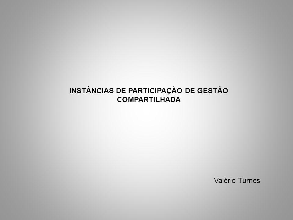 INSTÂNCIAS DE PARTICIPAÇÃO DE GESTÃO COMPARTILHADA Valério Turnes
