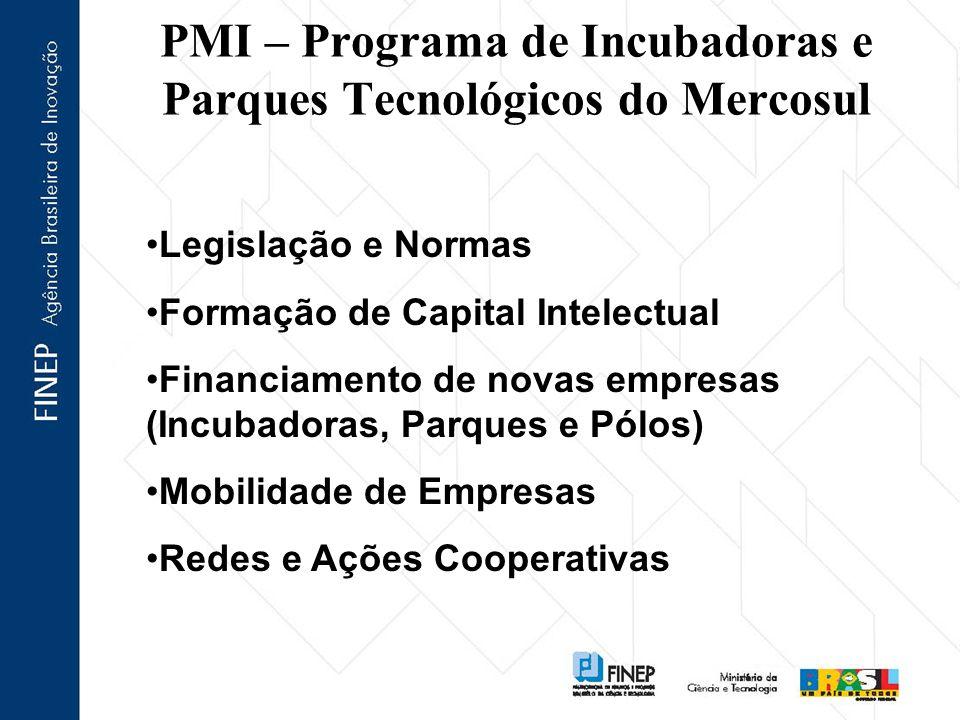 PMI – Programa de Incubadoras e Parques Tecnológicos do Mercosul Legislação e Normas Formação de Capital Intelectual Financiamento de novas empresas (