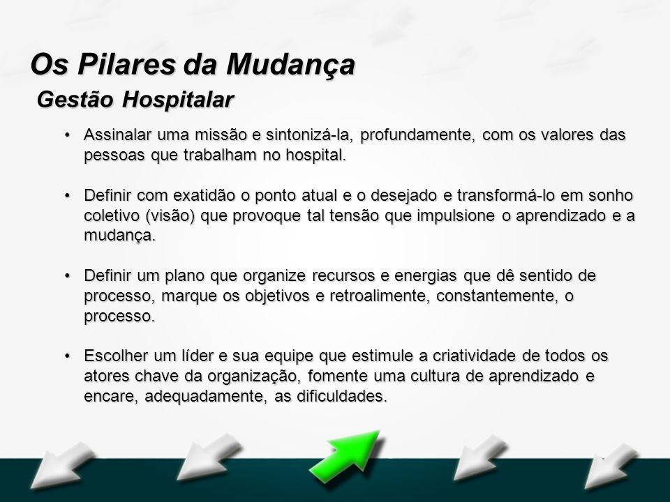 Hospital Geral Dr. Waldemar Alcântara Os Pilares da Mudança Gestão Hospitalar Assinalar uma missão e sintonizá-la, profundamente, com os valores das p