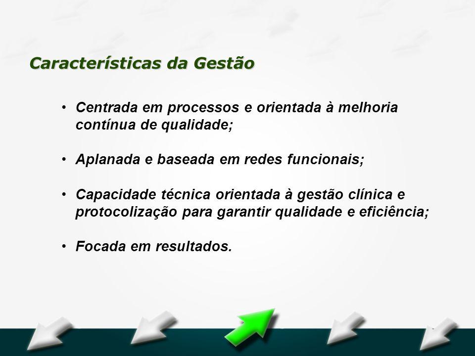 Hospital Geral Dr. Waldemar Alcântara Características da Gestão Centrada em processos e orientada à melhoria contínua de qualidade; Aplanada e baseada