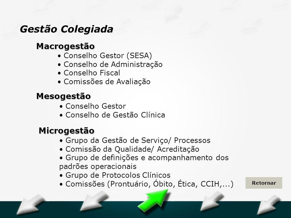 Hospital Geral Dr. Waldemar Alcântara Conselho Gestor (SESA) Conselho de Administração Conselho Fiscal Comissões de Avaliação Macrogestão Grupo da Ges